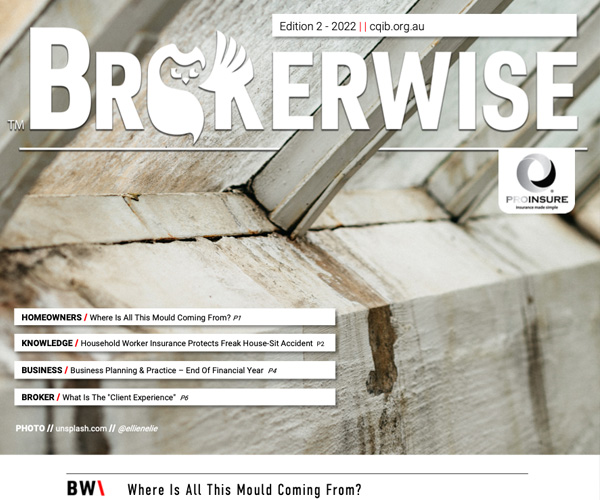 Brokerwise Newsletter